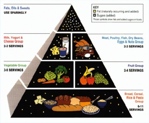 The Evolution of the USDA Food Pyramid: An Unsound Foundation ...